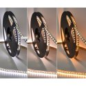 LEDstrip 12V 5m CCT 2800K-4000K 19,2W/m